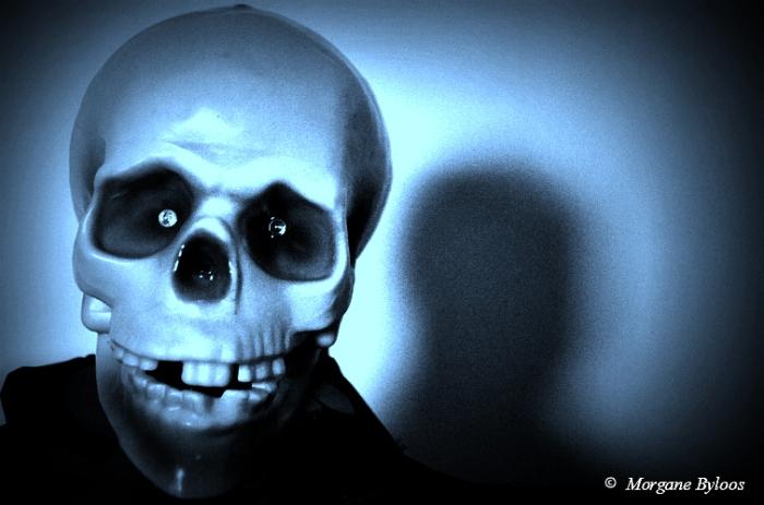 Selfie - skull