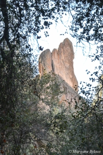 Pinnacles National Park - West Entrance