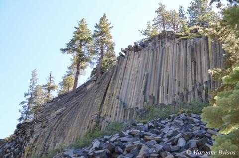 Mammoth Lakes - Devils Postpile