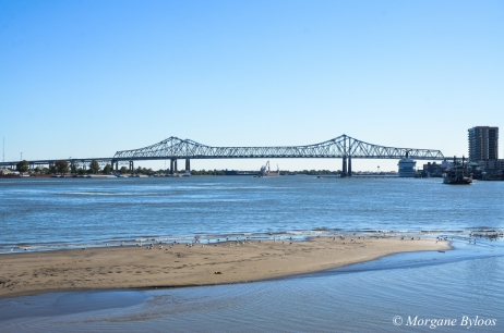 New Orleans: Point Algiers