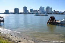 New Orleans from Point Algiers