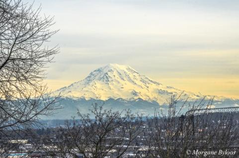 Downtown Tacoma: View of Mount Rainier
