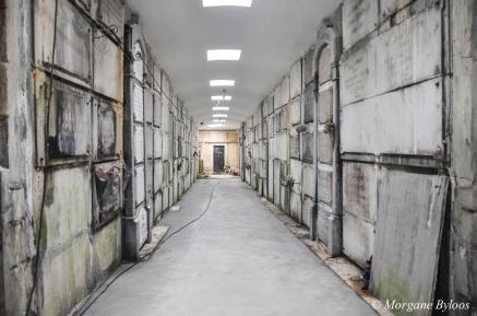 Abandoned Crypt