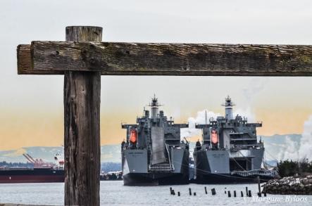 Tacoma - S.S. Cape Intrepid and S.S. Cape Island