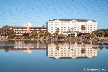 Anza Lagoon, Burlingame, CA