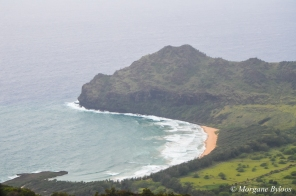 Kauai from a helicopter