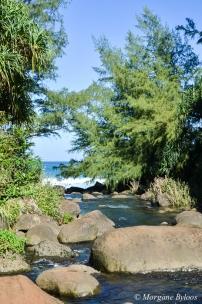 Hanakapi'ai Stream