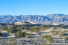 Death Valley - Sand Dunes