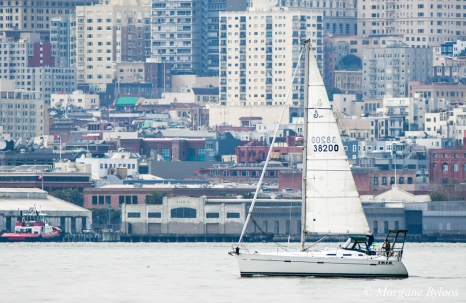 Sailboat in the San Francisco Bay