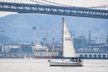 Sailboat in the San Francisco Bay - Bay Bridge in the background