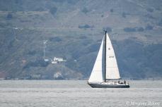 Sailboat in the San Francisco Bay