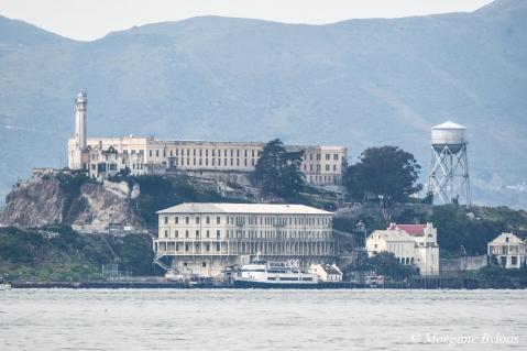 Alcatraz from Treasure Island