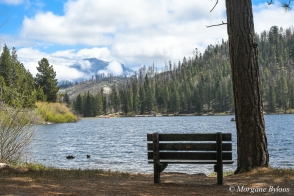 Giant Sequoia National Forest: Hume Lake