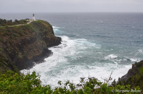 Kauai: Kilauea Point Lighthouse