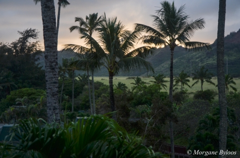 Kauai sunset