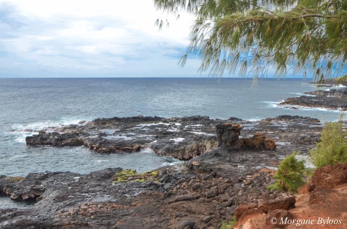 Kauai: Poi'pu Spouting Horn