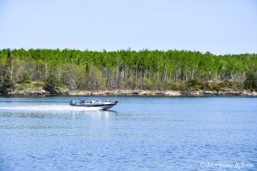 Voyageurs National Park: Rainy Lake