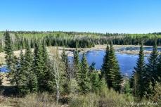 Voyageurs National Park: Beaver Pond Overlook