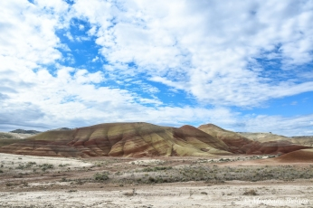 John Day Fossil Beds: Painted Hills Unit