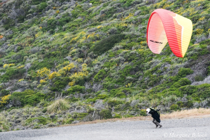 La photo du mois: le vent (the wind)