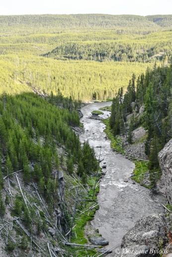 Yellowstone - Gibbon Falls