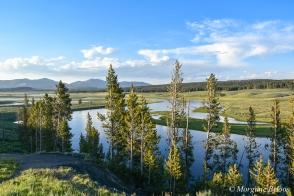 Yellowstone - Hayden Valley