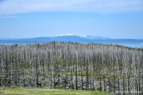 Yellowstone - Lake Butte Overlook