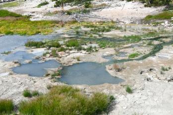 Yellowstone: Mud Volcano Area