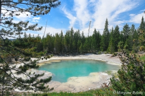 Yellowstone: Emerald Spring