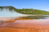 Yellowstone: Midway Geyser Basin - Grand Prismatic Spring
