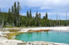 Yellowstone - West Thumb Geyser Basin