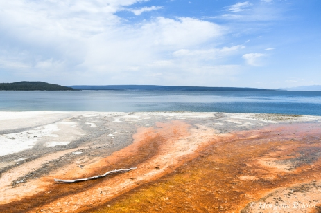 Yellowstone - West Thumb Geyser Basin - Yellowstone Lake