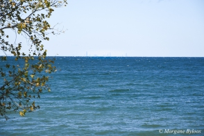 Indiana Dunes NP: Chicago from Mount Baldy