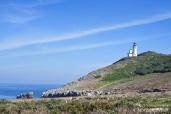 Channel Islands - Anacapa Island