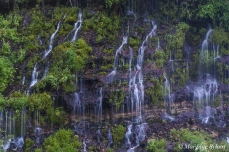 Burney Falls, CA