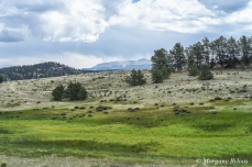 Florissant Fossil Beds NM - Pike's Peak in the distance