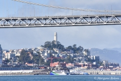 Boat Haul from SSF to Richmond - the Bay Bridge and Coit Tower