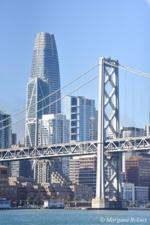Boat Haul from SSF to Richmond - the Bay Bridge and the Salesforce building