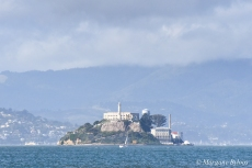 Boat Haul from SSF to Richmond - Alcatraz
