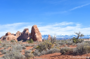 Arches NP: Windows Section