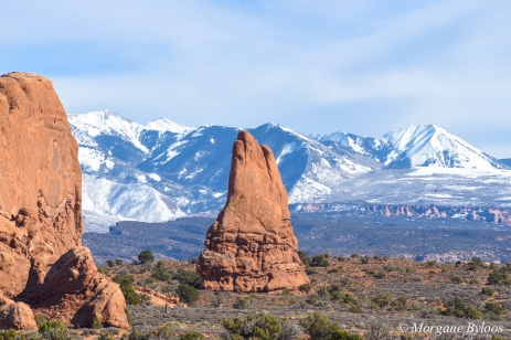 Arches NP: Windows Section with La Sal Mountains